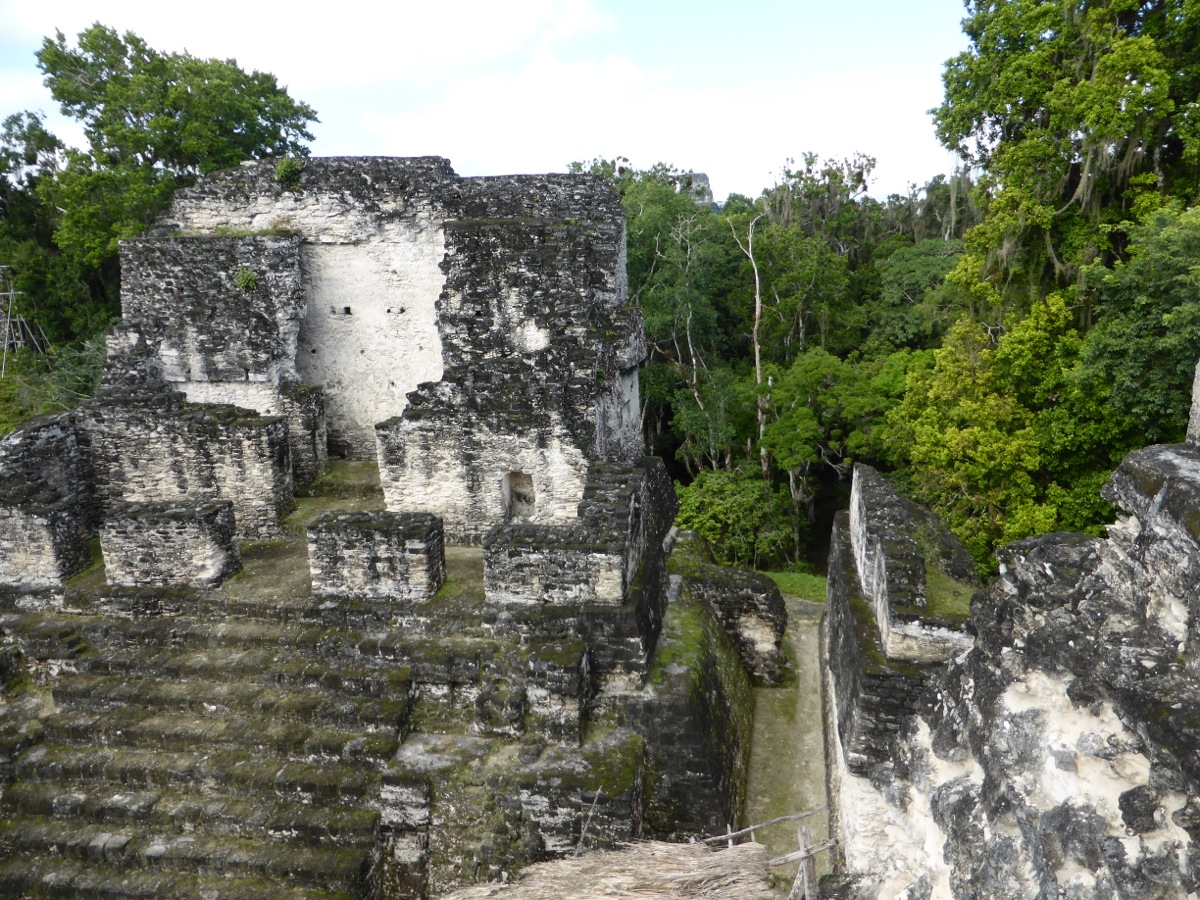 At the top of the centre temple in the Grand Plaza at Tikal