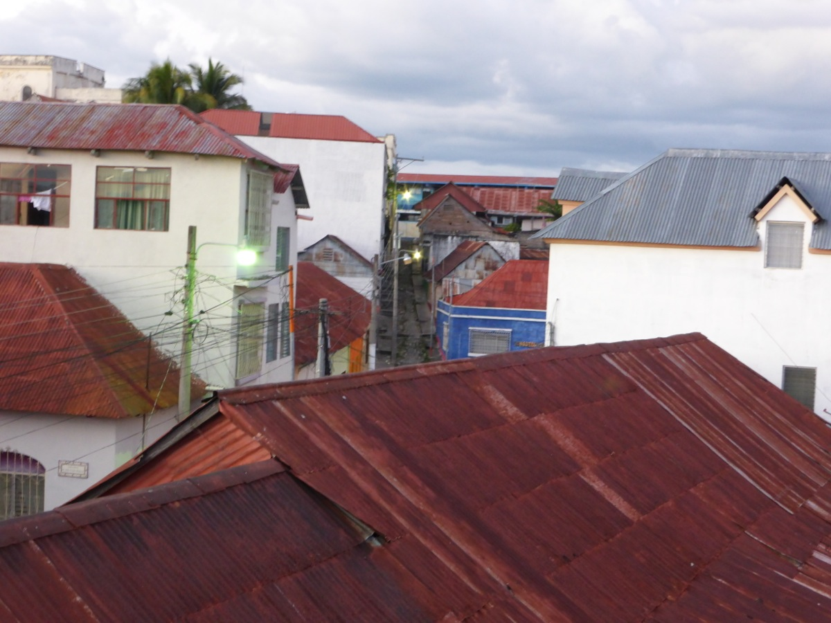 Flores rooftops