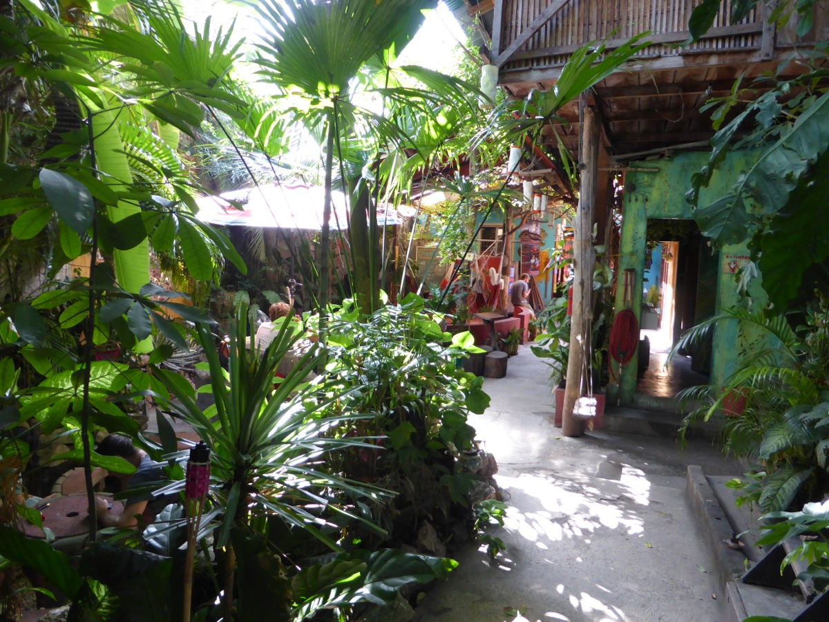 Gardens and lounge area at Los Amigos Hostel