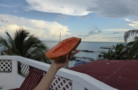 Belize: Being vegan