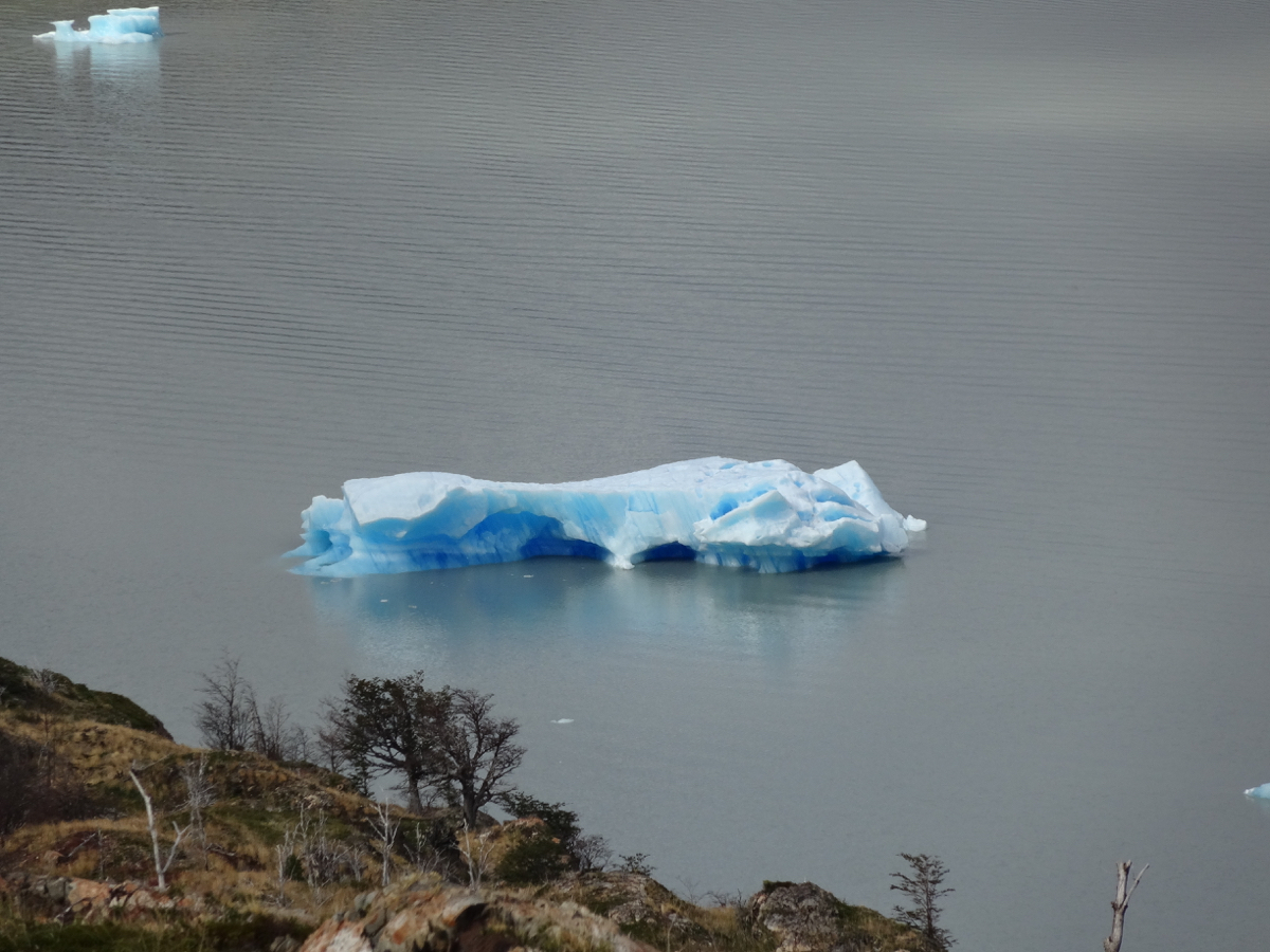 Pieces of ice floating on Lago Grey