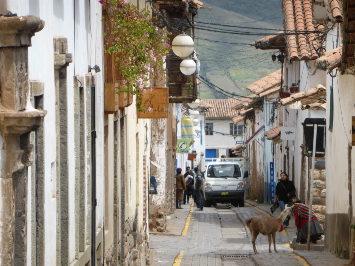 Streets of Cusco with resident llama!