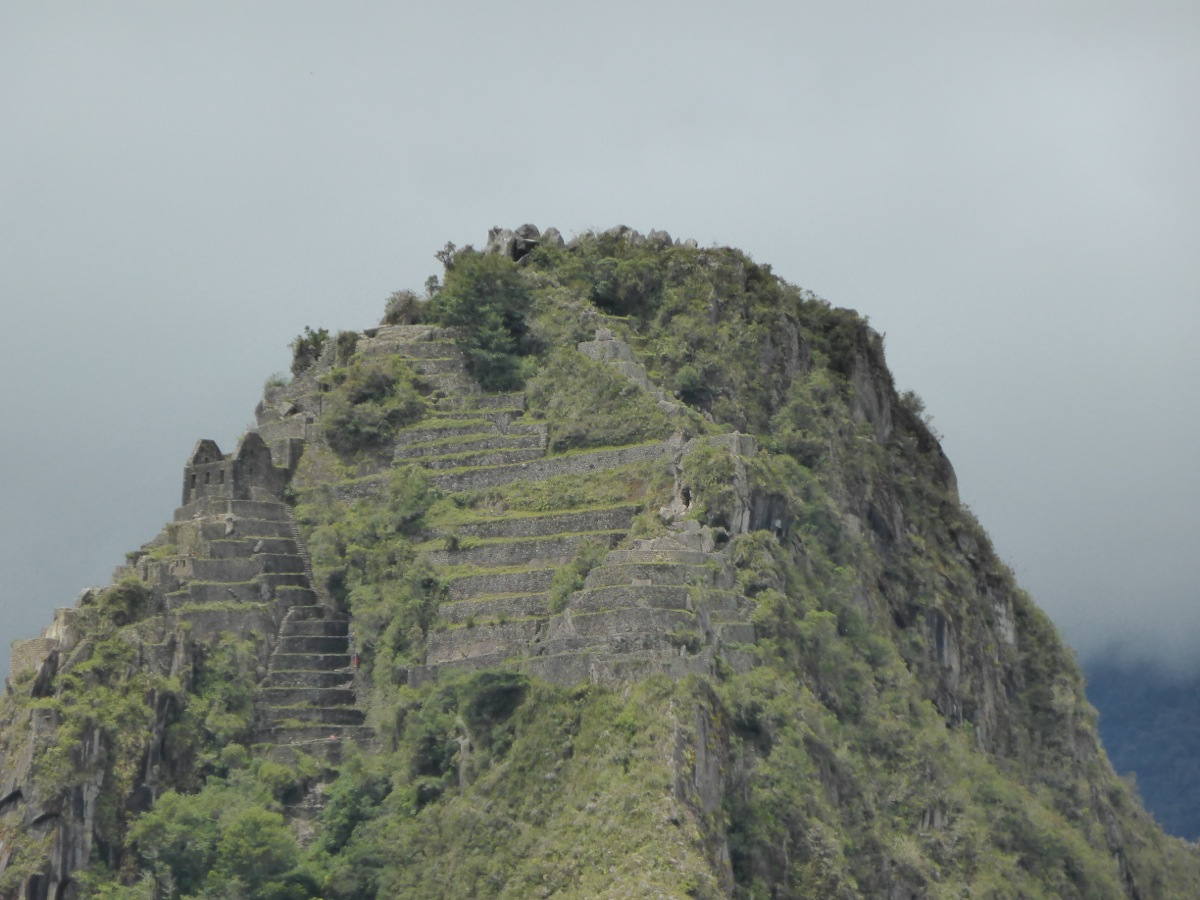 Close up of the peak of Wayanu Picchu