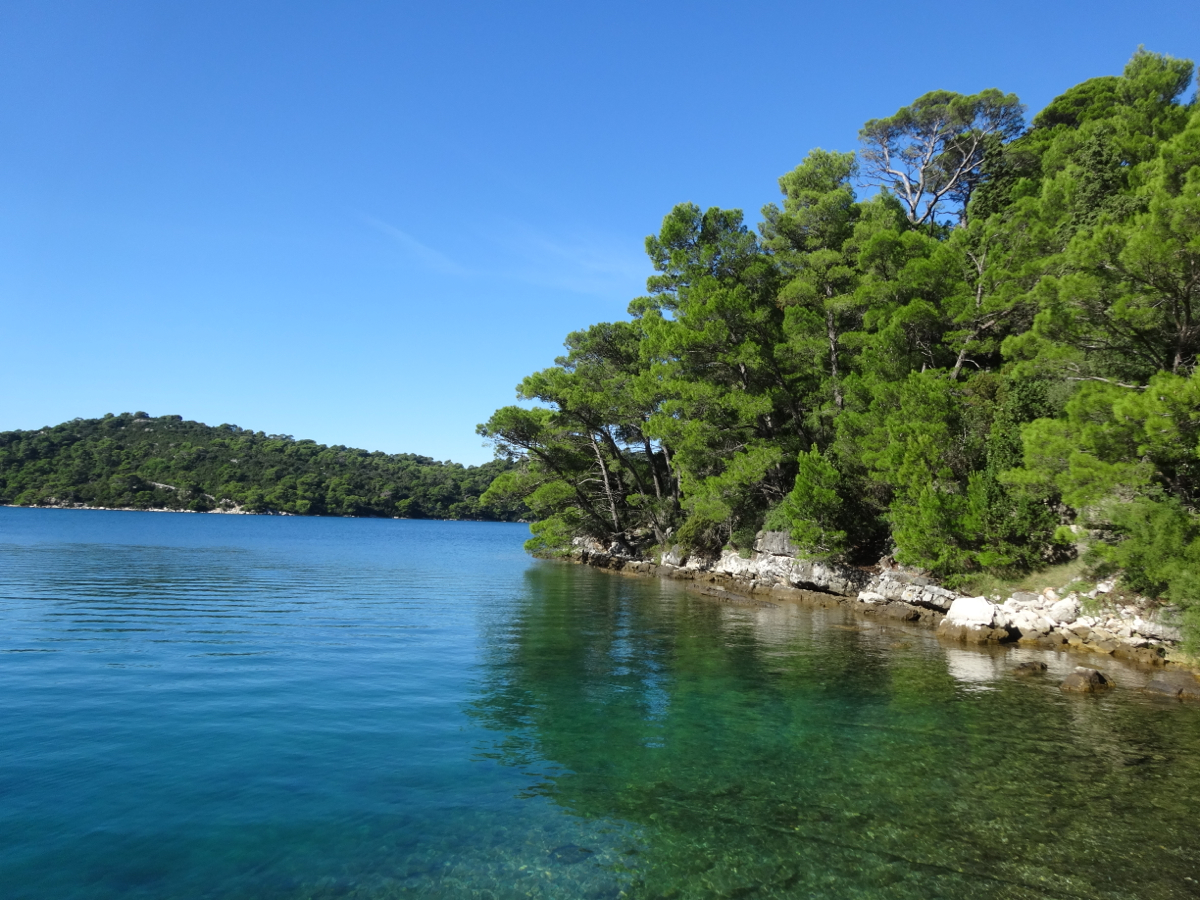 Clear water and pine tree lined shores of the large lake (Veliko Jezero)